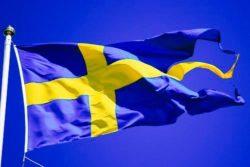 Svenska flaggan tretungad